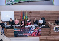 Audiência pública debate presença da mulher no parlamento