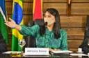 Audiência pública presidida por Adrianna Ramos debate a melhoria das cidades